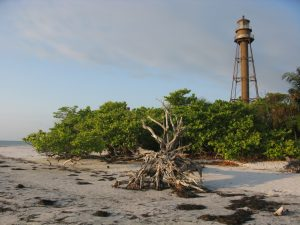 Beach_view_of_Sanibel_Lighthouse